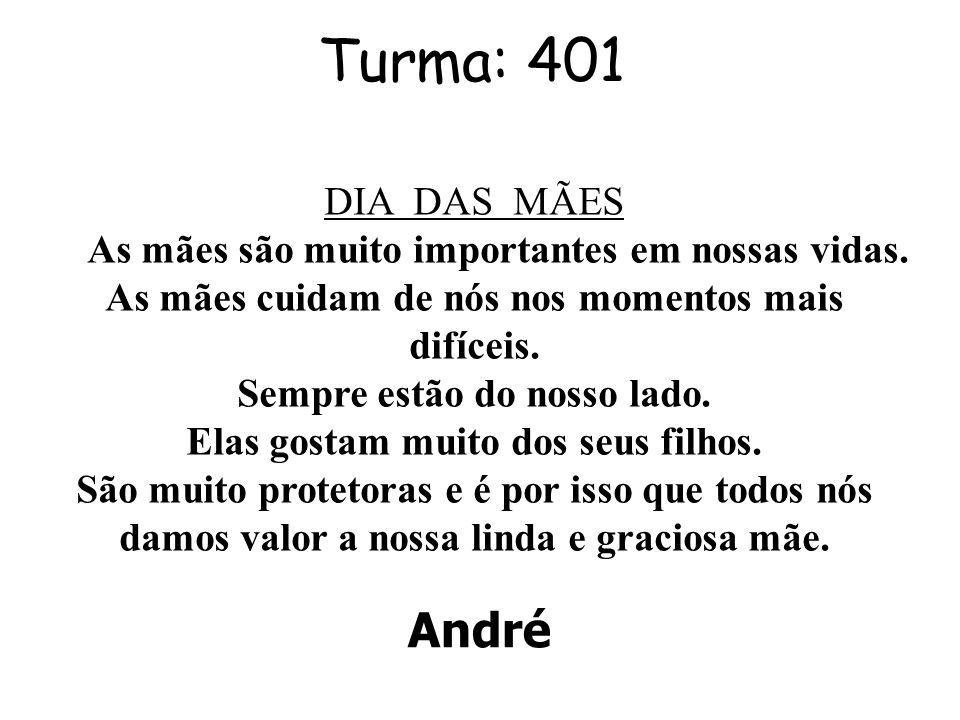 Turma: 401 André DIA DAS MÃES