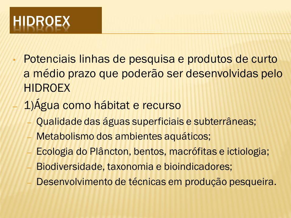 HIDROEX Potenciais linhas de pesquisa e produtos de curto a médio prazo que poderão ser desenvolvidas pelo HIDROEX.