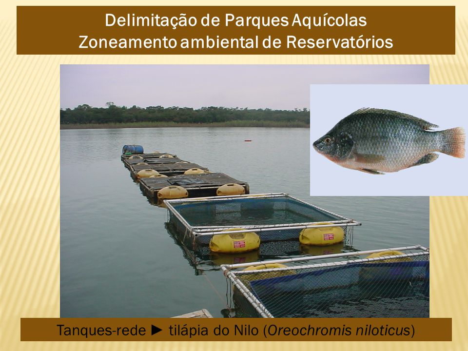 Delimitação de Parques Aquícolas Zoneamento ambiental de Reservatórios