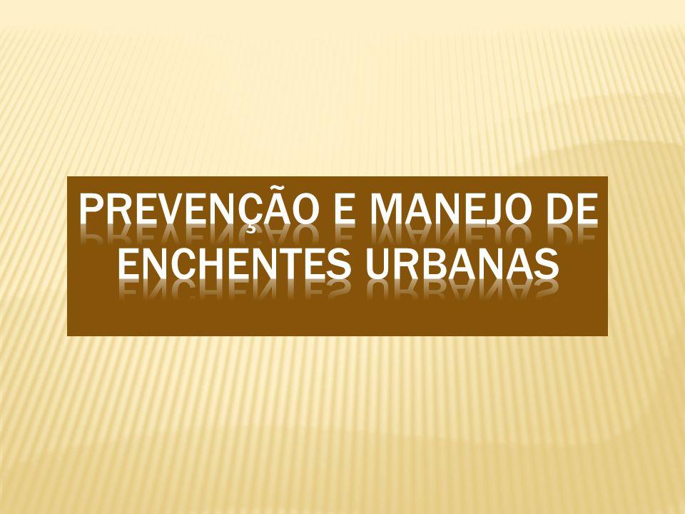 Prevenção e manejo de enchentes urbanas