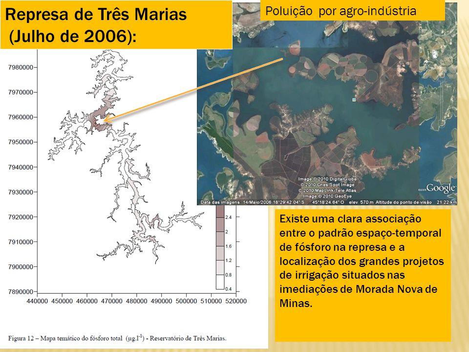 Represa de Três Marias (Julho de 2006): Poluição por agro-indústria