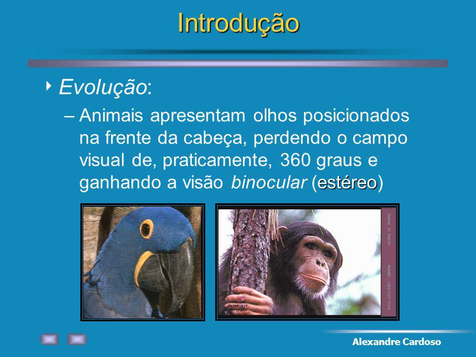 Introdução Evolução: