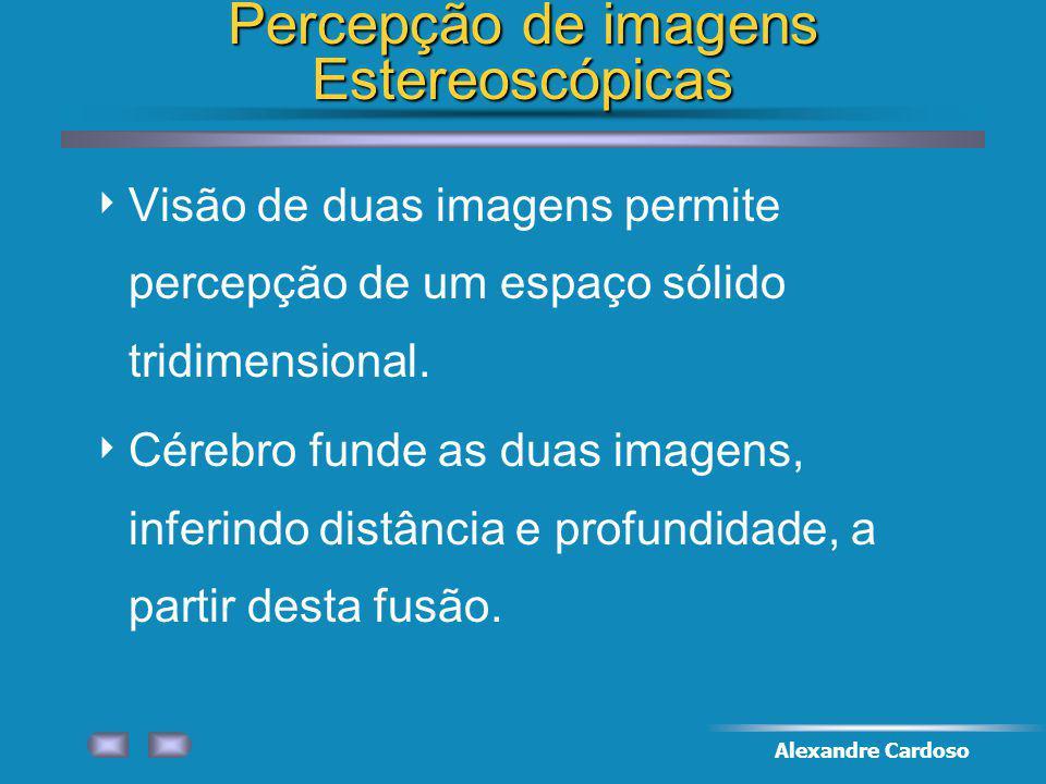 Percepção de imagens Estereoscópicas
