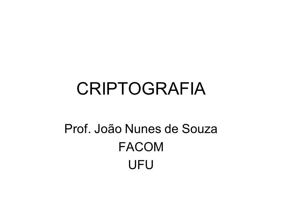 Prof. João Nunes de Souza FACOM UFU