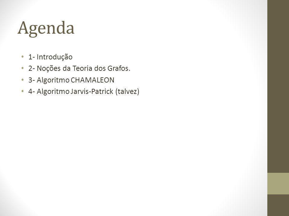 Agenda 1- Introdução 2- Noções da Teoria dos Grafos.