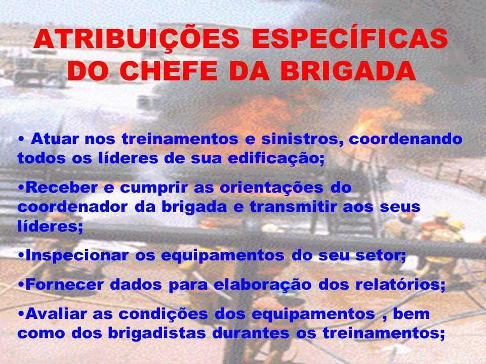 ATRIBUIÇÕES ESPECÍFICAS DO CHEFE DA BRIGADA