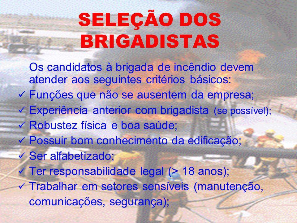 SELEÇÃO DOS BRIGADISTAS