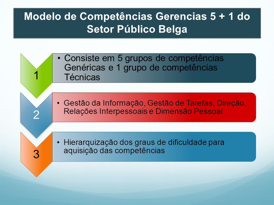 Modelo de Competências Gerencias 5 + 1 do Setor Público Belga