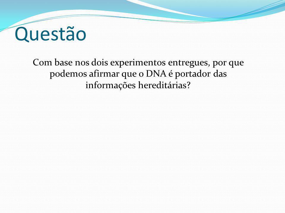 Questão Com base nos dois experimentos entregues, por que podemos afirmar que o DNA é portador das informações hereditárias