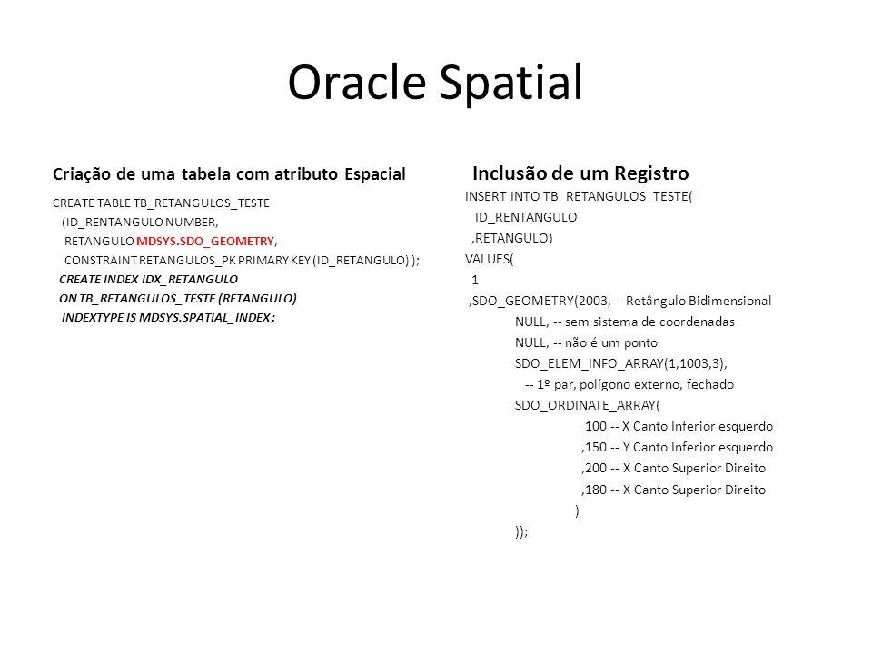Oracle Spatial Inclusão de um Registro