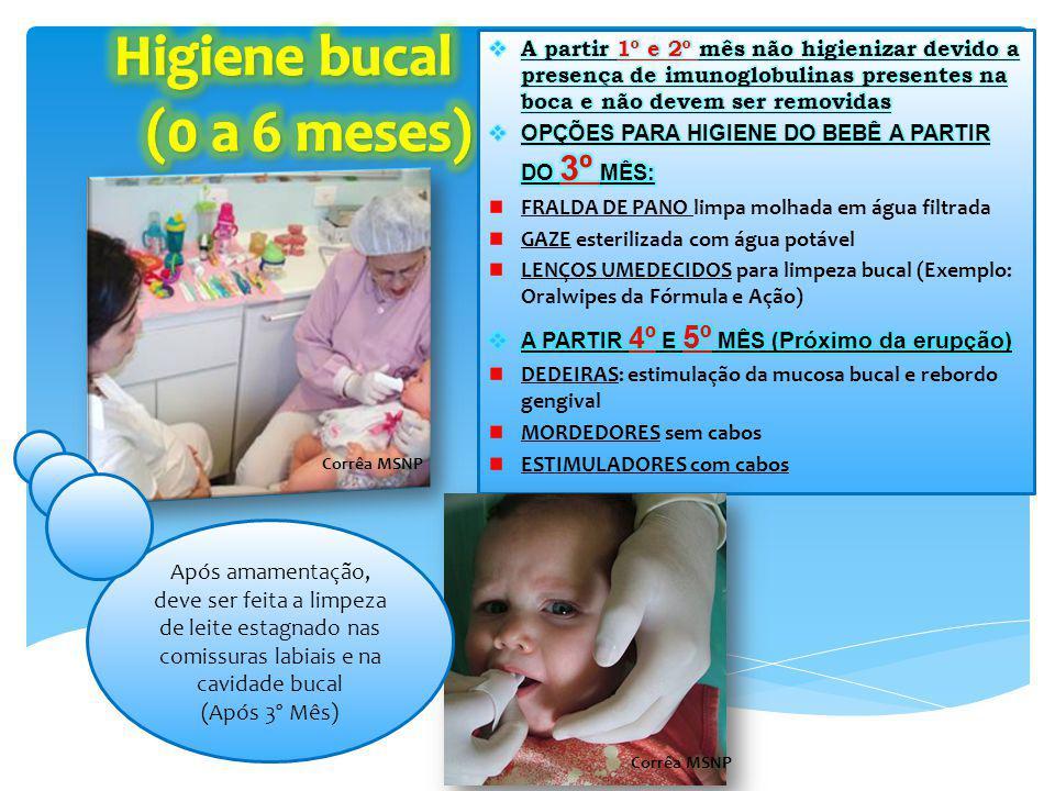 Higiene bucal (0 a 6 meses)