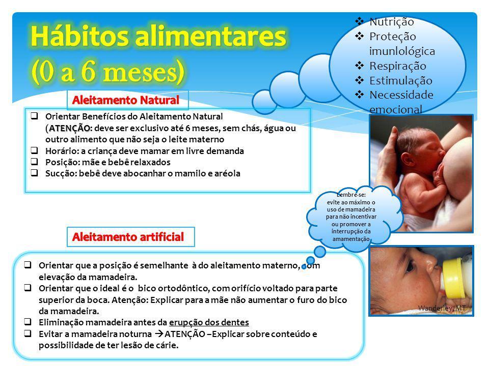 Hábitos alimentares (0 a 6 meses) Nutrição Proteção imunlológica