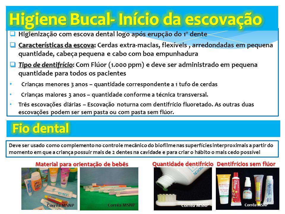 Higiene Bucal- Início da escovação