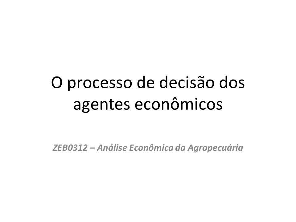 O processo de decisão dos agentes econômicos