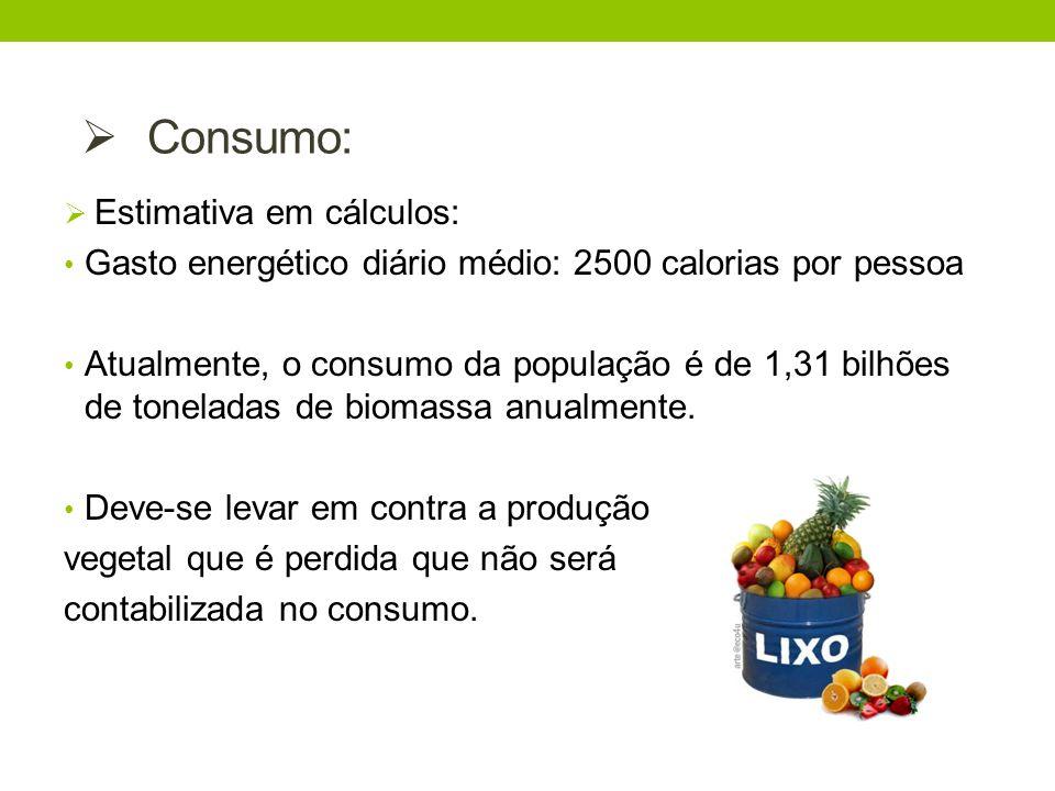 Consumo: Estimativa em cálculos: