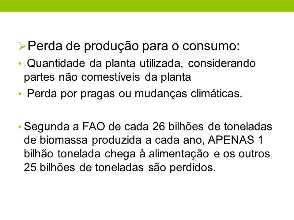Perda de produção para o consumo: