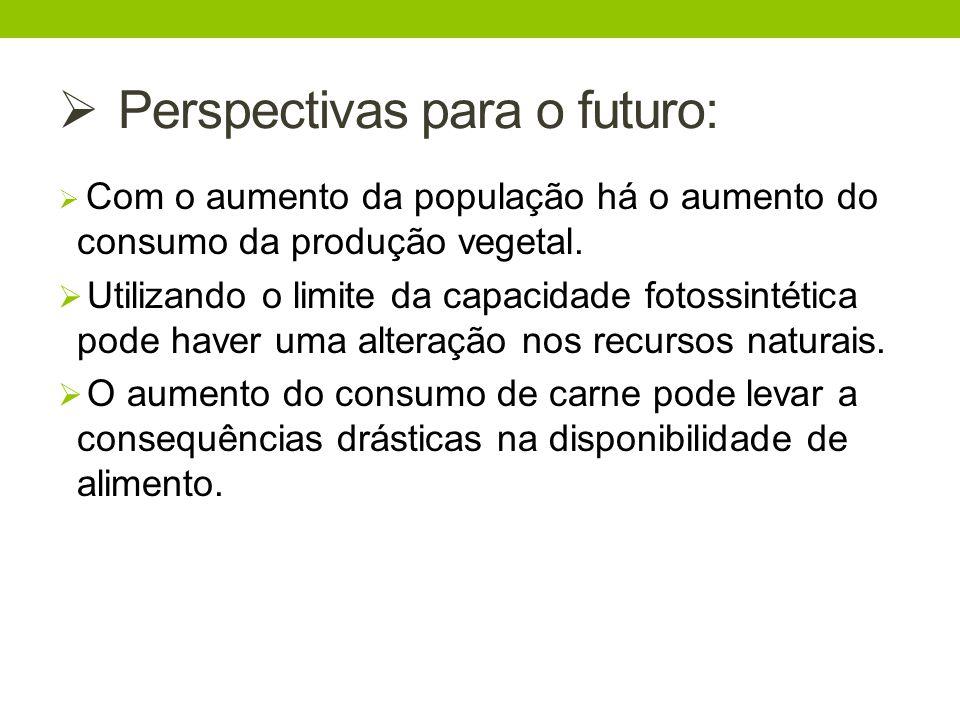 Perspectivas para o futuro: