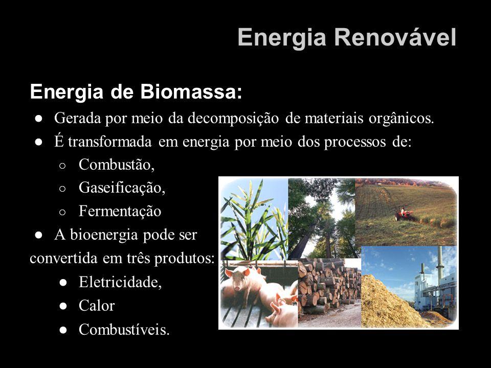 Energia Renovável Energia de Biomassa: