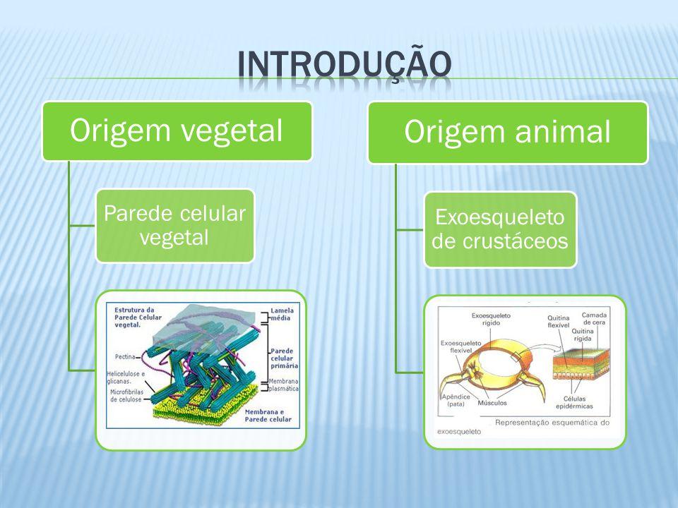 introdução Origem vegetal Origem animal Parede celular vegetal