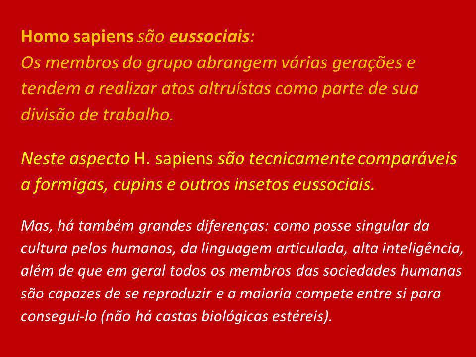 Homo sapiens são eussociais: