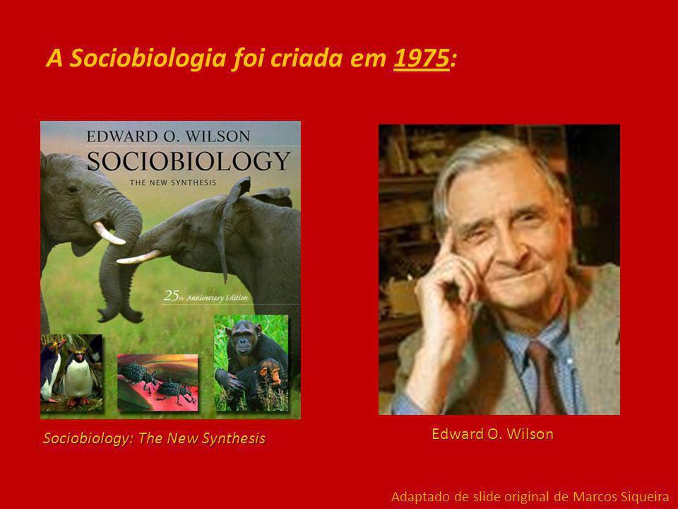 A Sociobiologia foi criada em 1975: