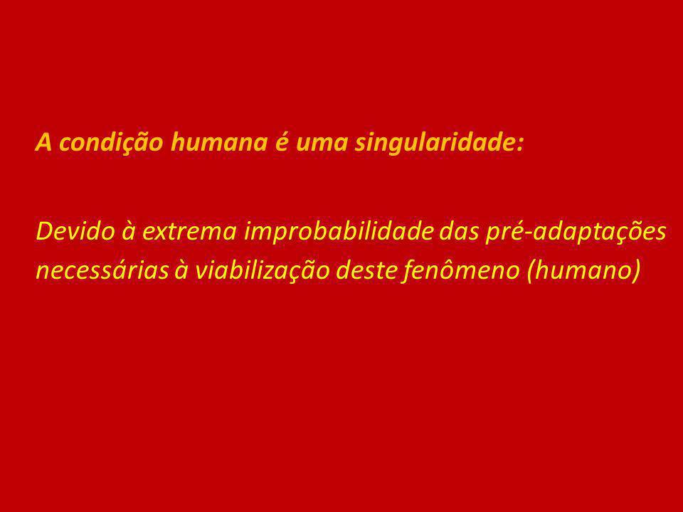 A condição humana é uma singularidade: