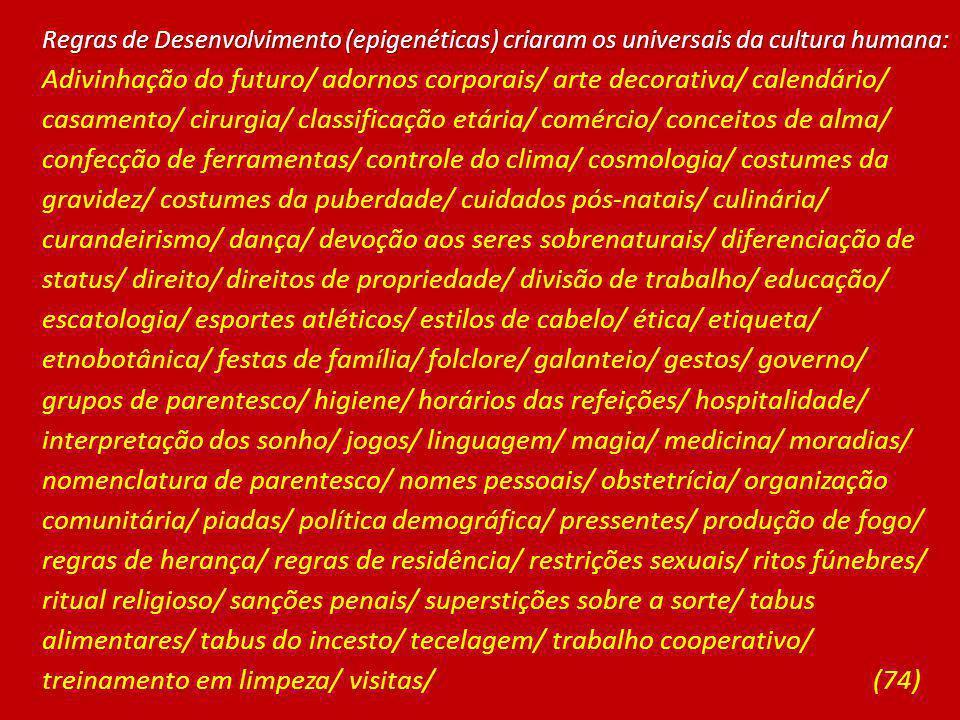 Regras de Desenvolvimento (epigenéticas) criaram os universais da cultura humana: