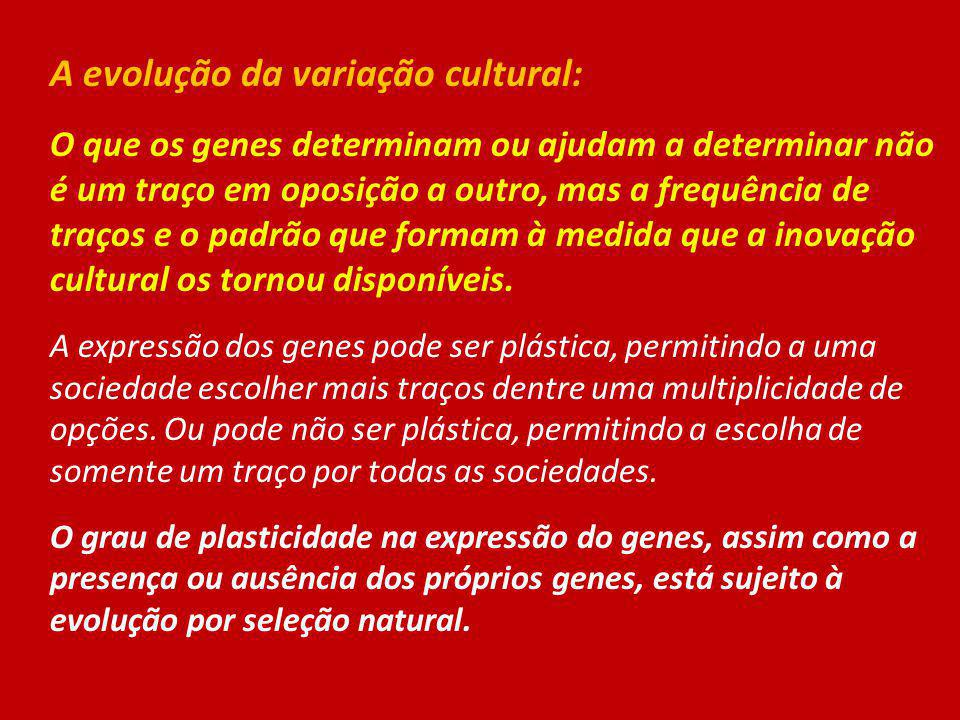A evolução da variação cultural: