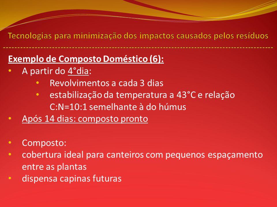 Exemplo de Composto Doméstico (6): A partir do 4°dia: