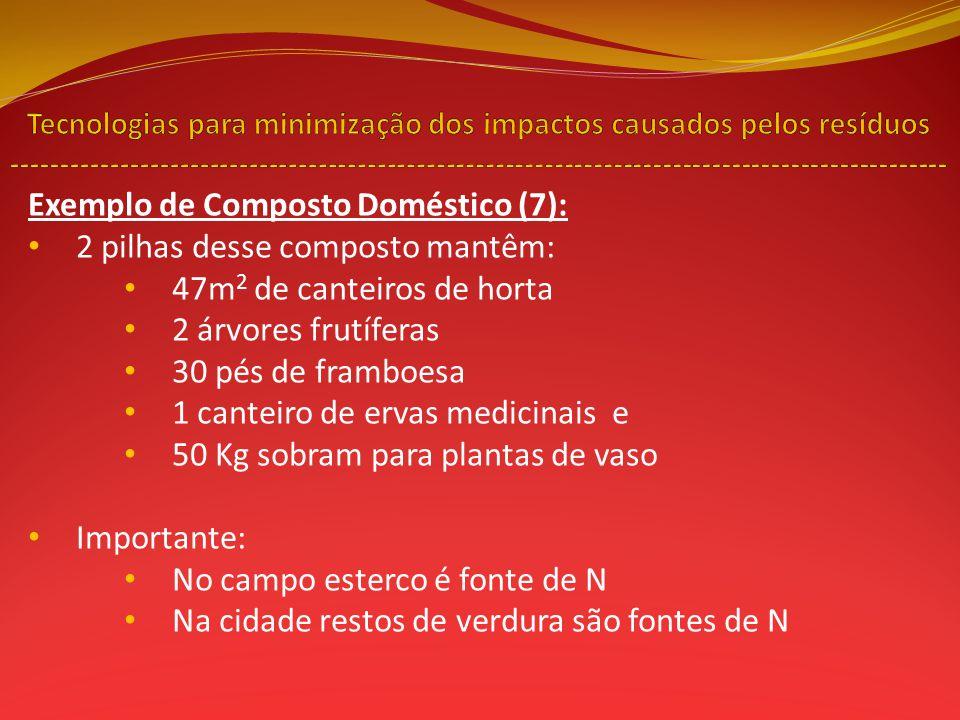 Exemplo de Composto Doméstico (7): 2 pilhas desse composto mantêm: