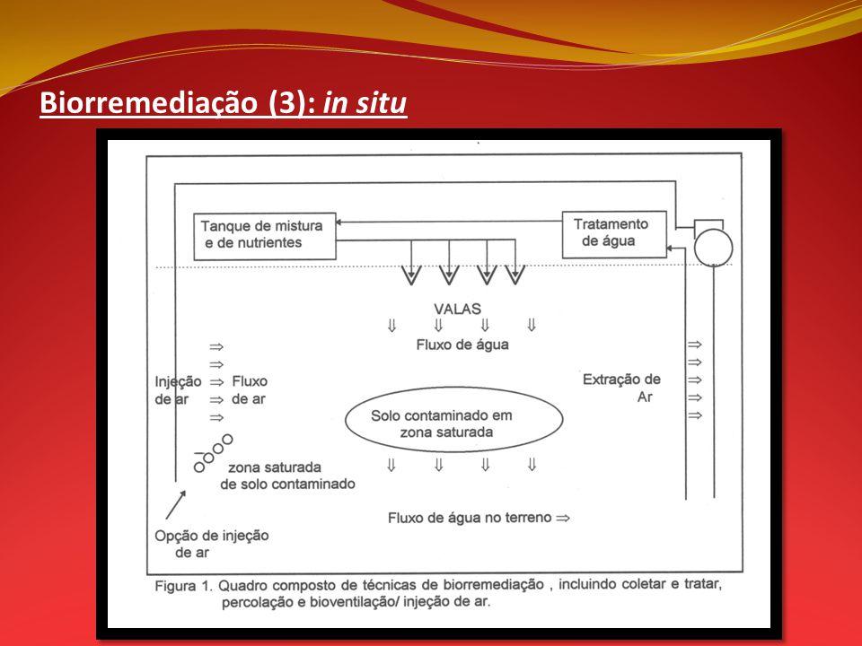 Biorremediação (3): in situ