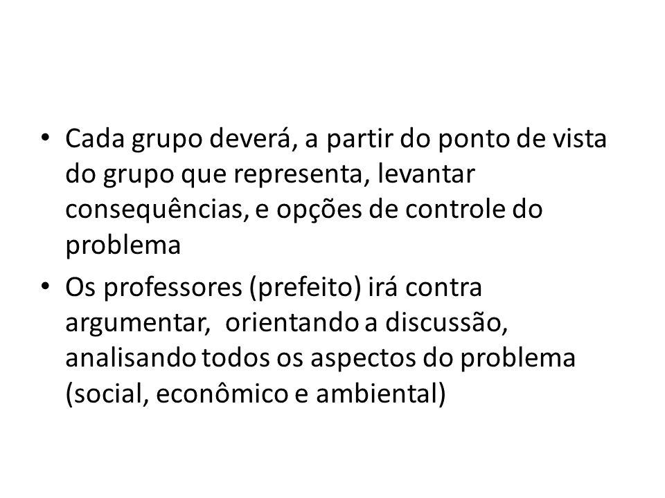 Cada grupo deverá, a partir do ponto de vista do grupo que representa, levantar consequências, e opções de controle do problema