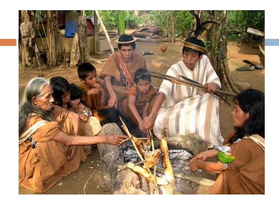 História Recursos Naturais  alimentação Classificação e utilidade