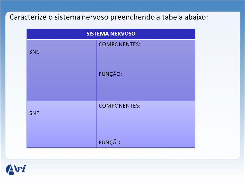 Caracterize o sistema nervoso preenchendo a tabela abaixo: