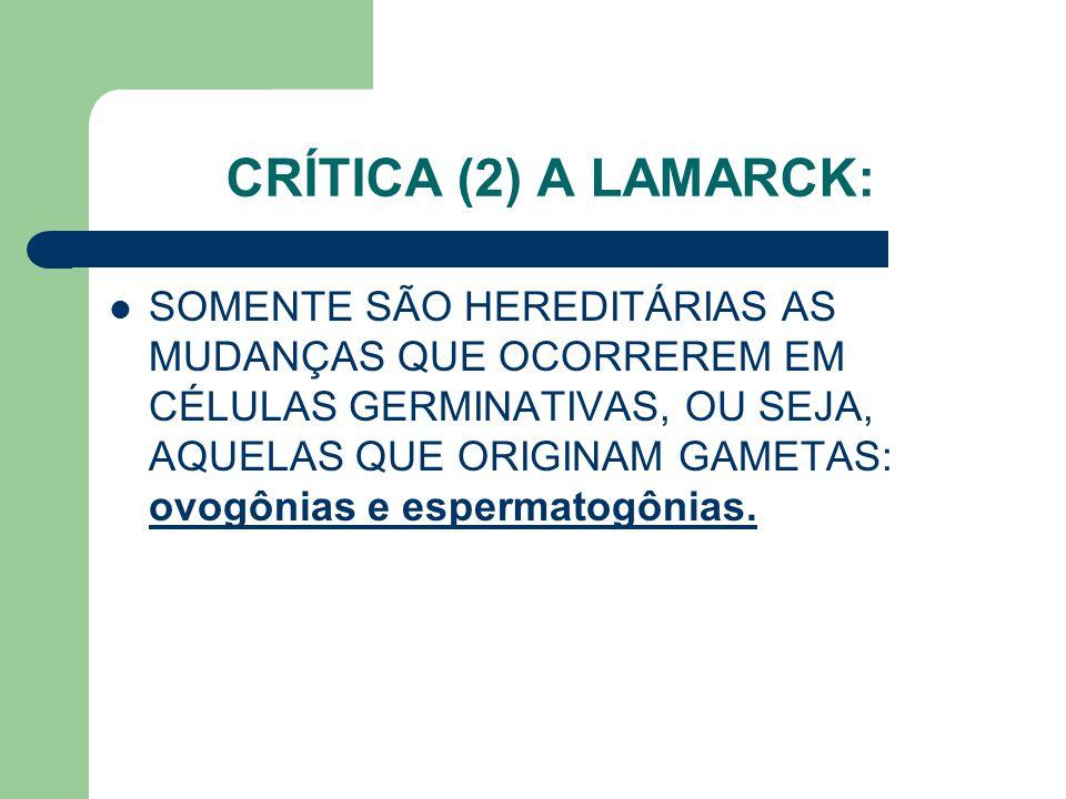 CRÍTICA (2) A LAMARCK: