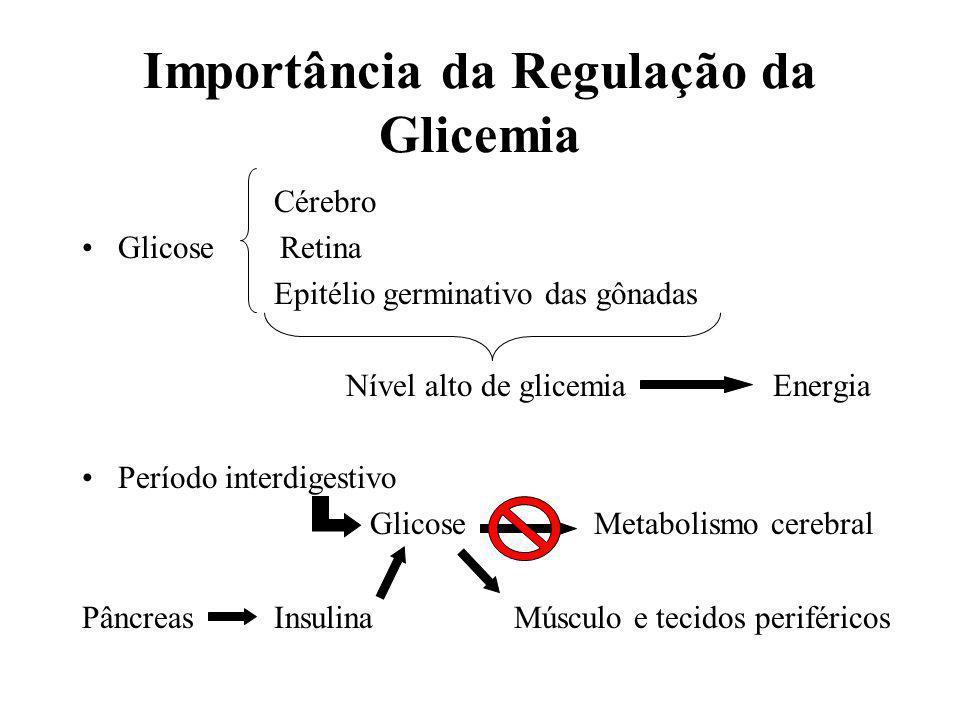 Importância da Regulação da Glicemia