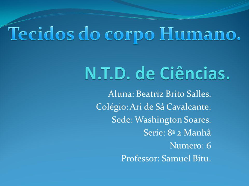 Aluna: Beatriz Brito Salles.