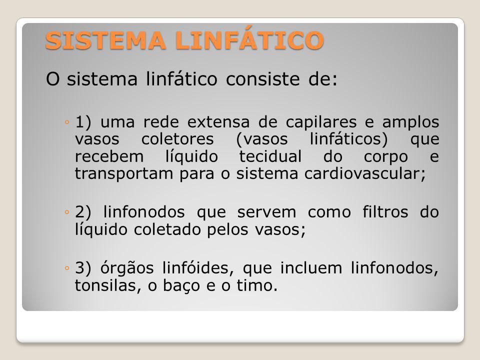 SISTEMA LINFÁTICO O sistema linfático consiste de: