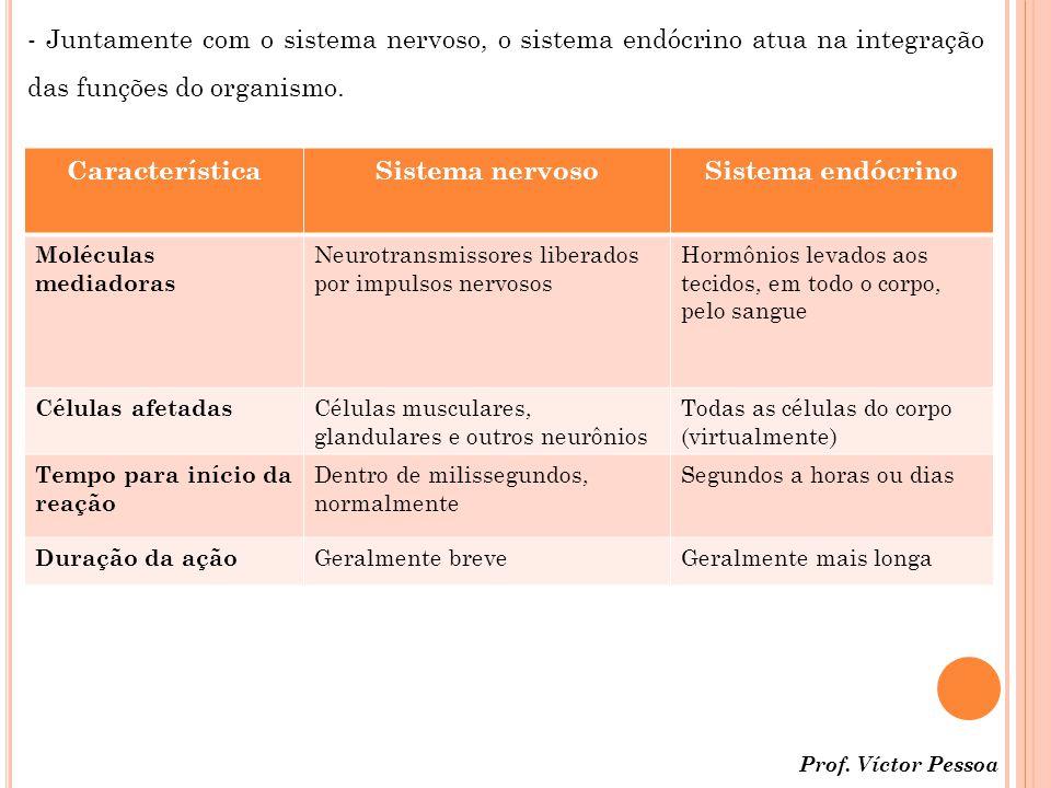 Característica Sistema nervoso Sistema endócrino