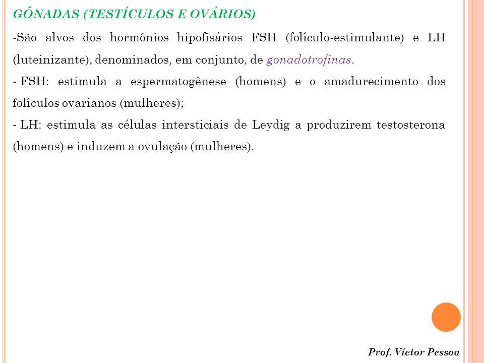 GÔNADAS (TESTÍCULOS E OVÁRIOS)