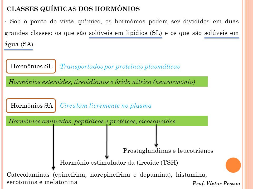 CLASSES QUÍMICAS DOS HORMÔNIOS