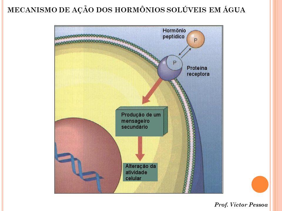 MECANISMO DE AÇÃO DOS HORMÔNIOS SOLÚVEIS EM ÁGUA