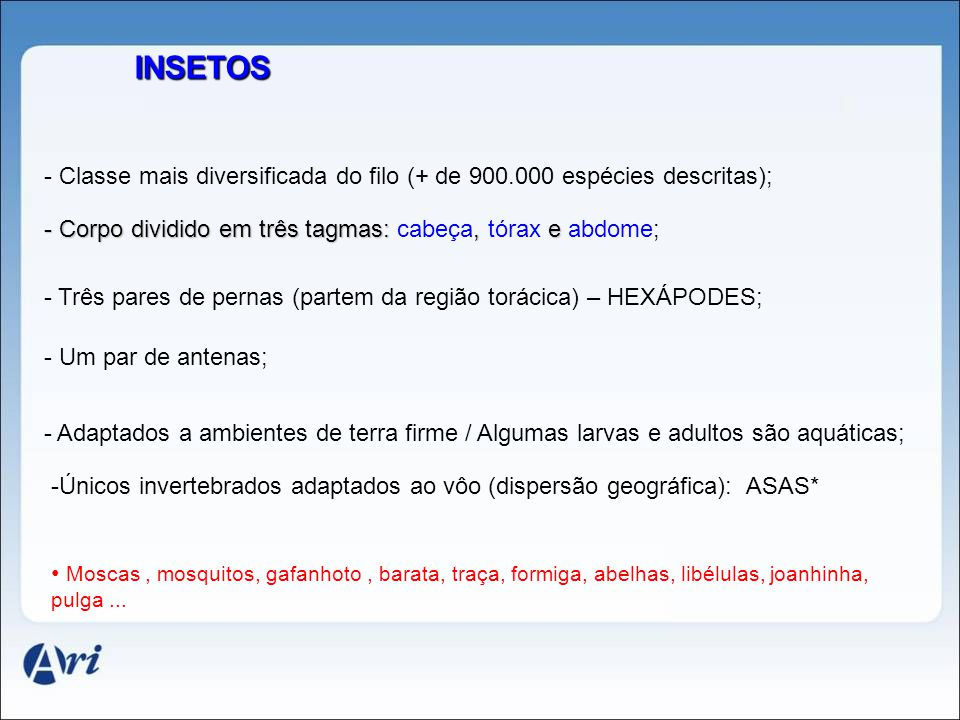INSETOS - Classe mais diversificada do filo (+ de 900.000 espécies descritas); - Corpo dividido em três tagmas: cabeça, tórax e abdome;