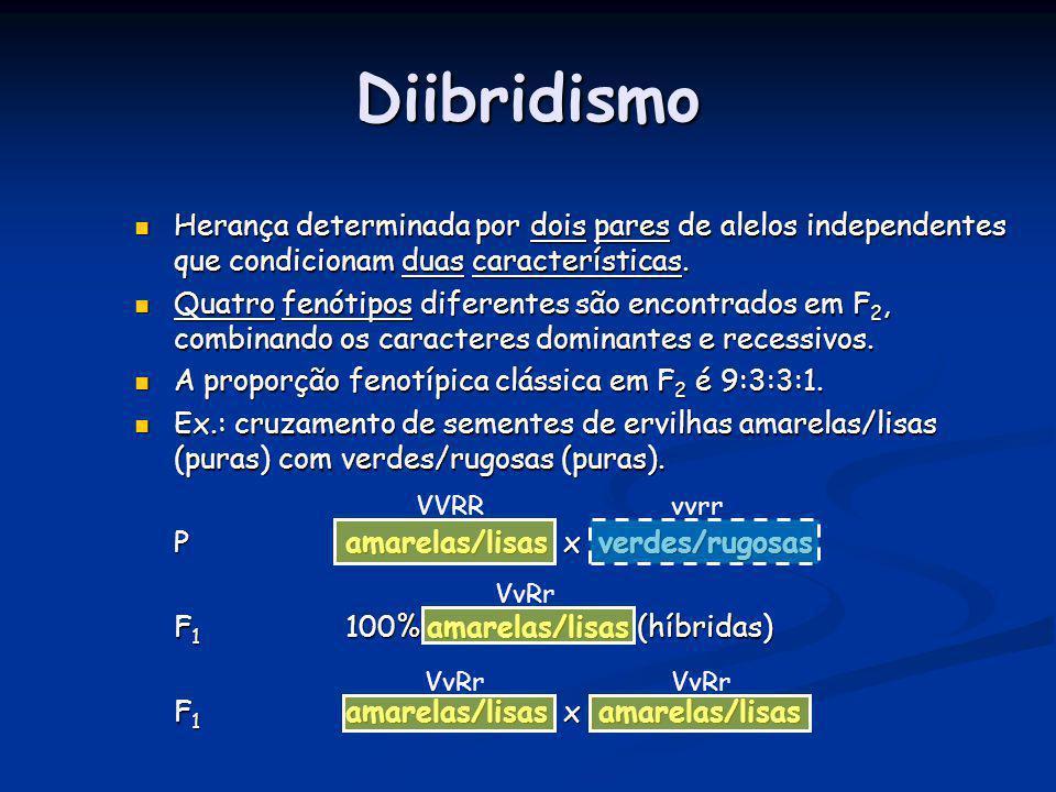 Diibridismo Herança determinada por dois pares de alelos independentes que condicionam duas características.