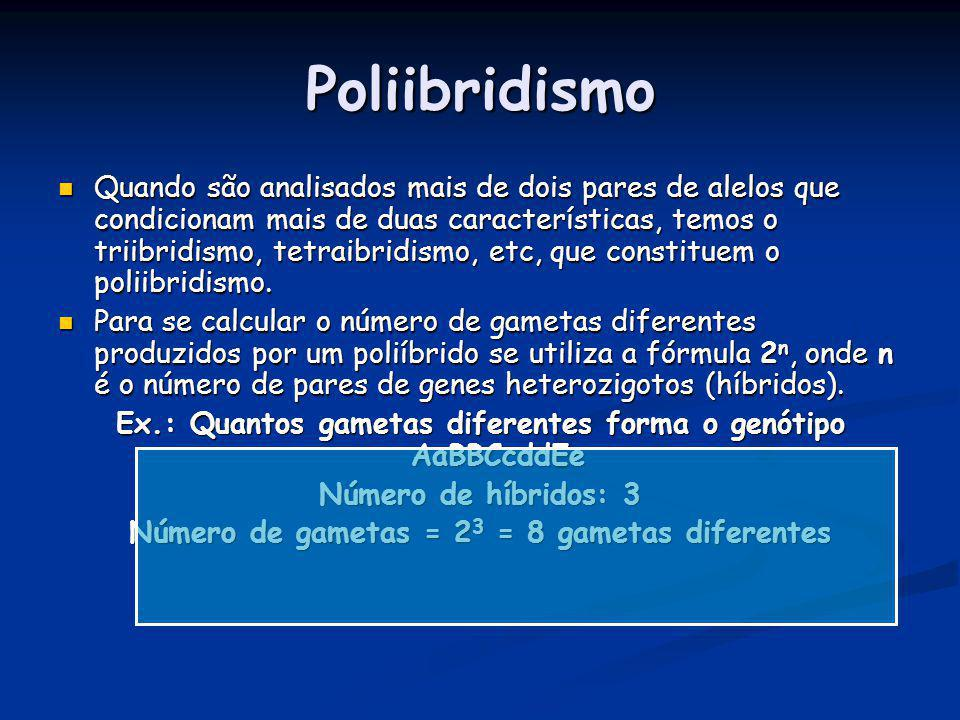 Poliibridismo