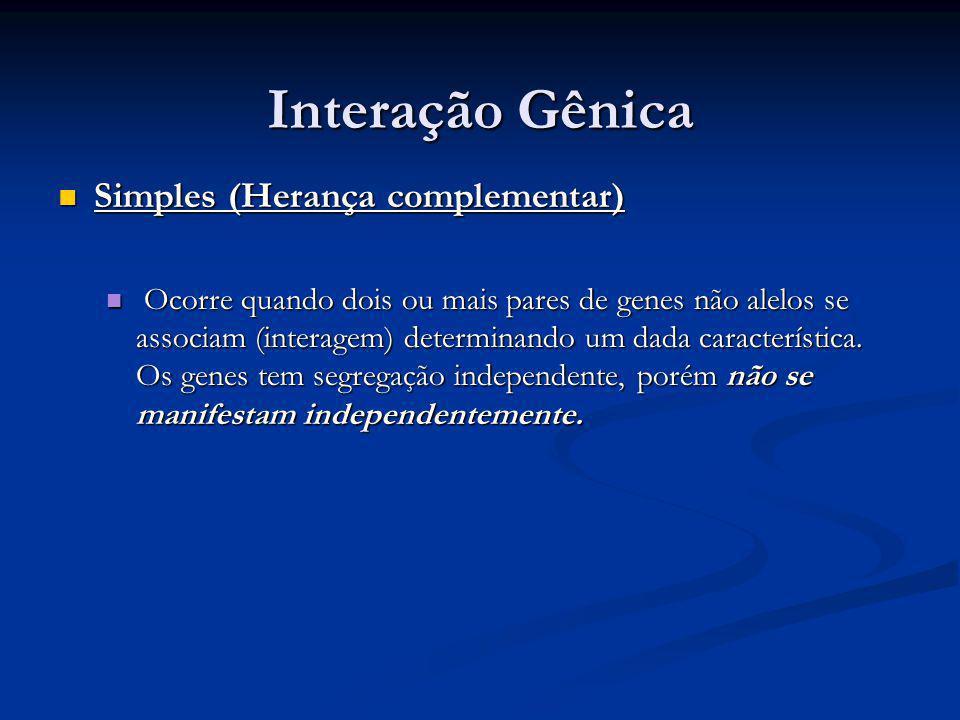 Interação Gênica Simples (Herança complementar)