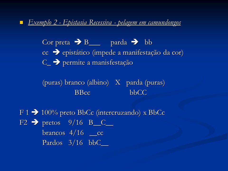 Exemplo 2 - Epistasia Recessiva - pelagem em camundongos