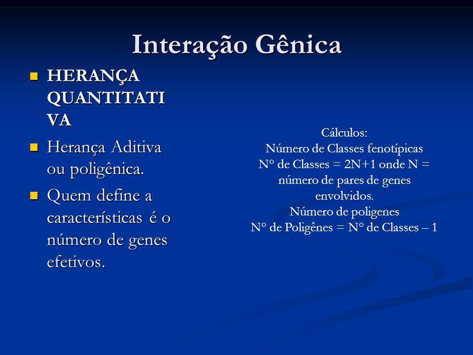 Interação Gênica HERANÇA QUANTITATIVA Herança Aditiva ou poligênica.