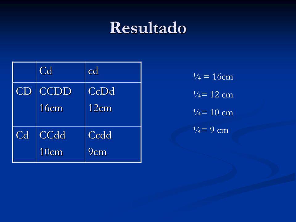 Resultado Cd cd CD CCDD 16cm CcDd 12cm CCdd 10cm Ccdd 9cm ¼ = 16cm