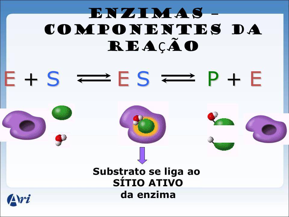 ENZIMAS – COMPONENTES DA REAÇÃO